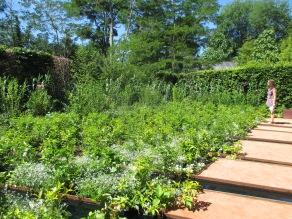 Contemplating an artist's garden